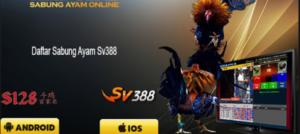SV388 • SV288 • SV88 • SV388 CASINO
